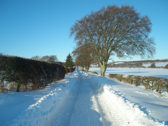South of Heriotfield