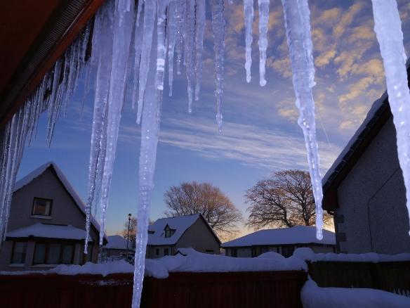 Oxton icicles 2 - Dec 2010